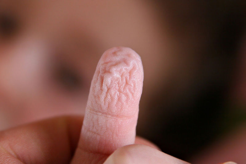Do your fingers go wrinkly? Image by: Fir0002/Flagstaffotos