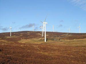 Wind farm near Stirling, in Scotland   Image: Richard Webb