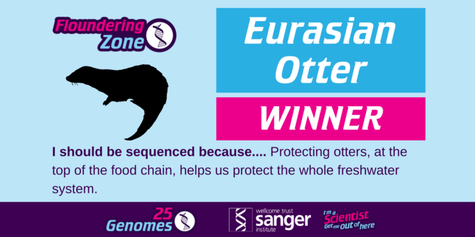 the winning species in the Floundering Zone is the Eurasian Otter