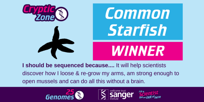 the winning species in the Cryptic Zone is the Common Starfish
