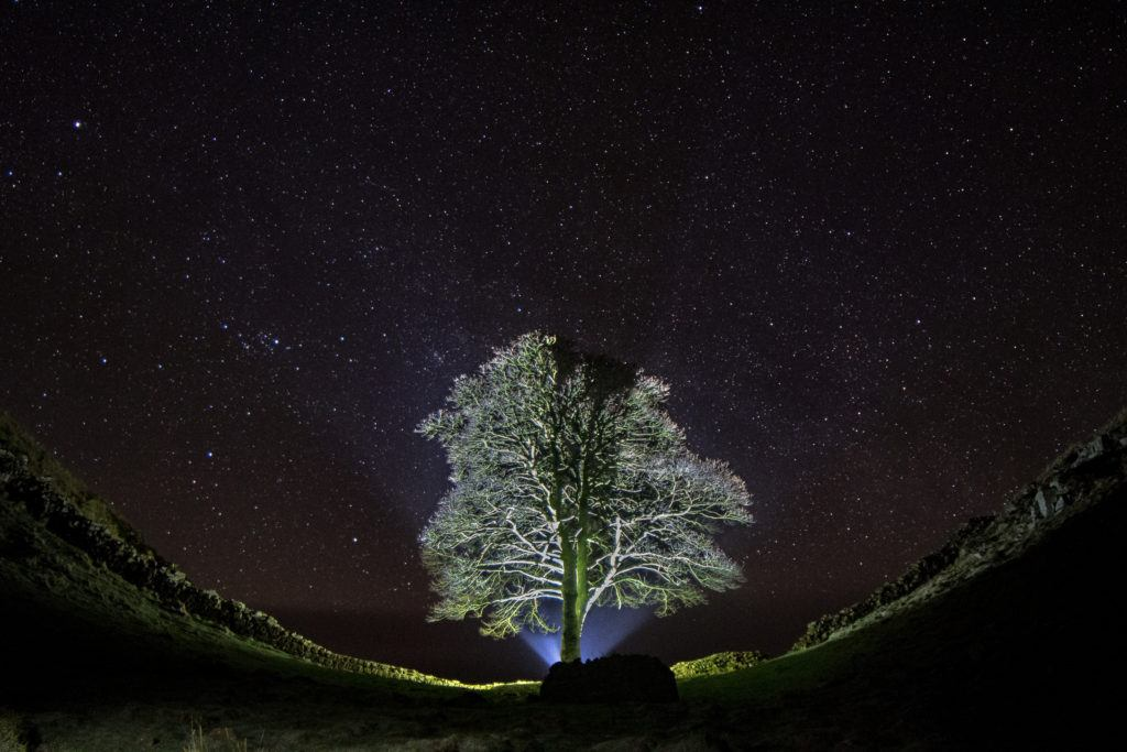 The stars above Sycamore Gap