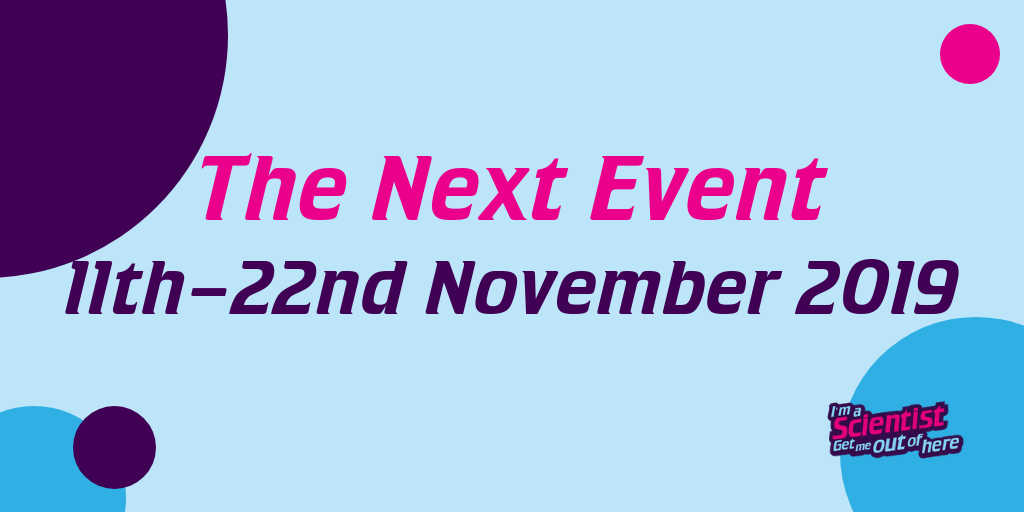 The next event is November 2019