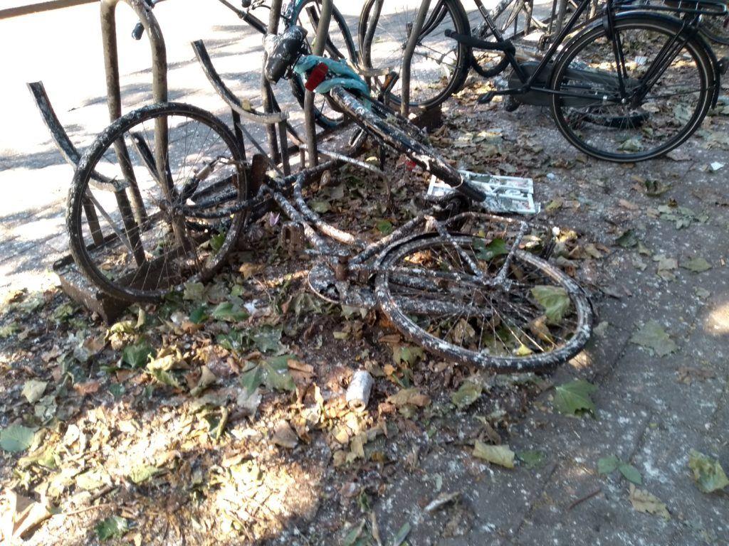 Bikes covered in bird poo