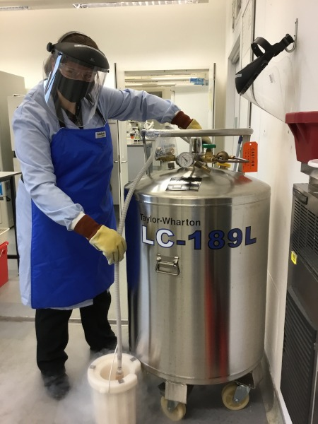 Michelle wears a blue apron and stands next to a large silver cylinder containing liquid nitrogen. Nitrogen is pouring out of a tube into a flask, generating lots of steam.