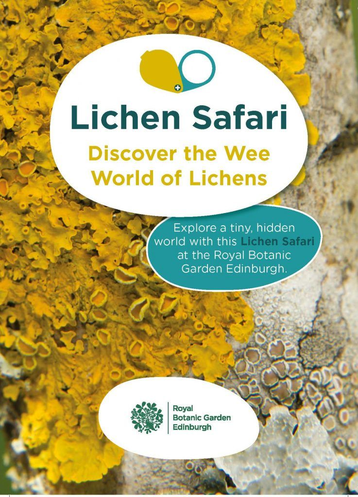 A colourful cover of a lichen trail guide.